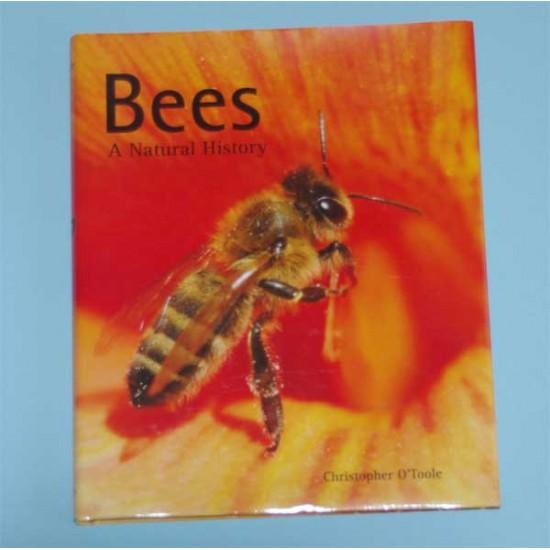 Bees: A Natural History