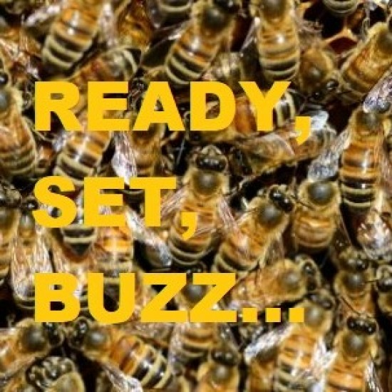 Ready, Set, BUZZ Package
